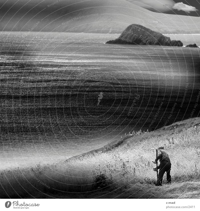 Mowing farmer by the sea Clouds Ocean Scythe Meadow Grass Work and employment Moody Cliff Water Ireland Farmer Mow the lawn Black & white photo