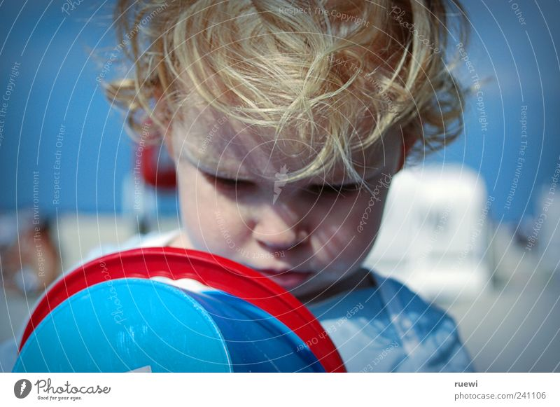 What's that? Playing Summer Summer vacation Beach Ocean Study Human being Masculine Child Boy (child) 1 1 - 3 years Toddler Sand Observe Esthetic Blue Red Joy
