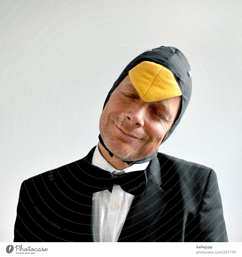 Human being Man Animal Face Head Adults Funny Contentment Bird Elegant Masculine Carnival Smiling Suit Whimsical Grinning