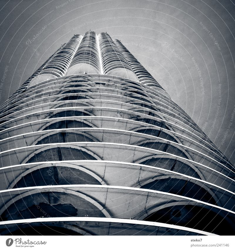 skyscraper bone High-rise Facade Tall Cold Modern Gray Chicago Concrete Round Structures and shapes Black & white photo Exterior shot Deserted Worm's-eye view