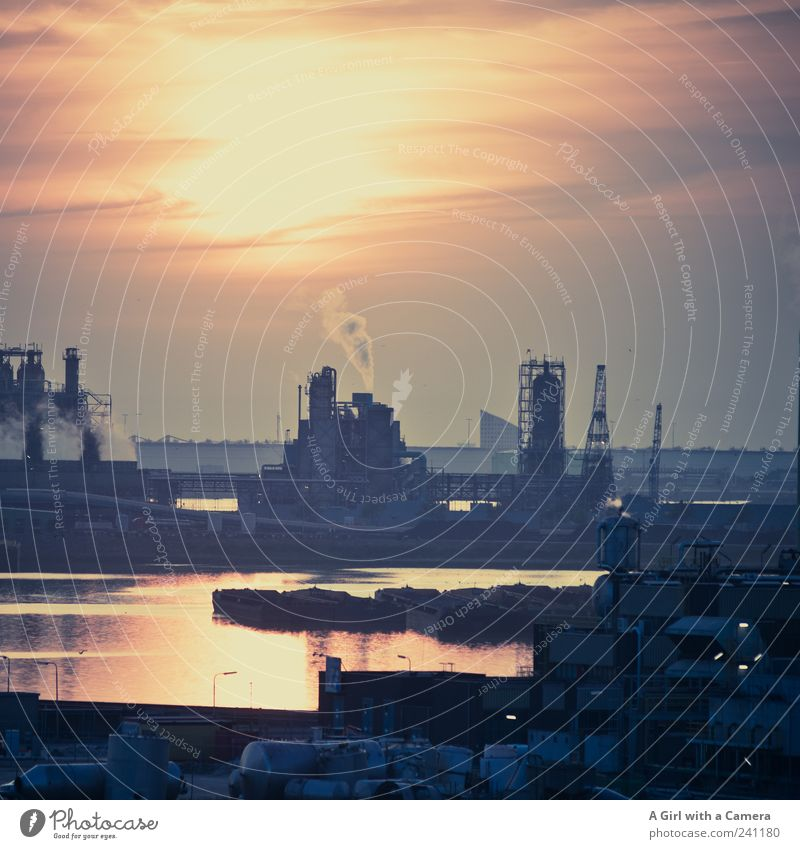 Beautiful Dark Gloomy Industry Threat Logistics Harbour North Sea Smoke River bank Container Environmental pollution Netherlands Industrial plant Sunset