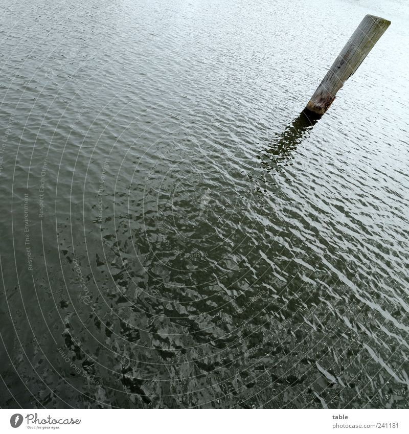 rather oblique Environment Nature Elements Water Summer Waves Ocean Lake Jetty Wooden stake Pole Stand Dark Cold Wet Gloomy Blue Gray Black Loneliness