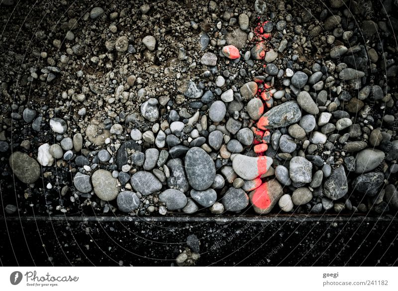 RAL 3024 I Stone Sign Signs and labeling Line Arrow Gray Red Black Label Pebble Asphalt Edge Measurement Colour photo Exterior shot Deserted Bird's-eye view