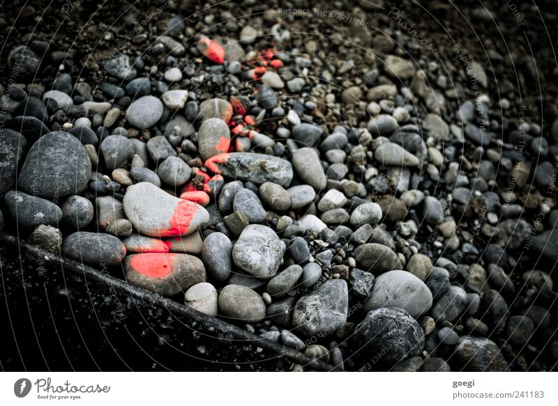 RAL 3024 II Stone Sign Signs and labeling Line Arrow Gray Red Black Pebble Asphalt Edge Label Measurement Colour photo Exterior shot Deserted Day