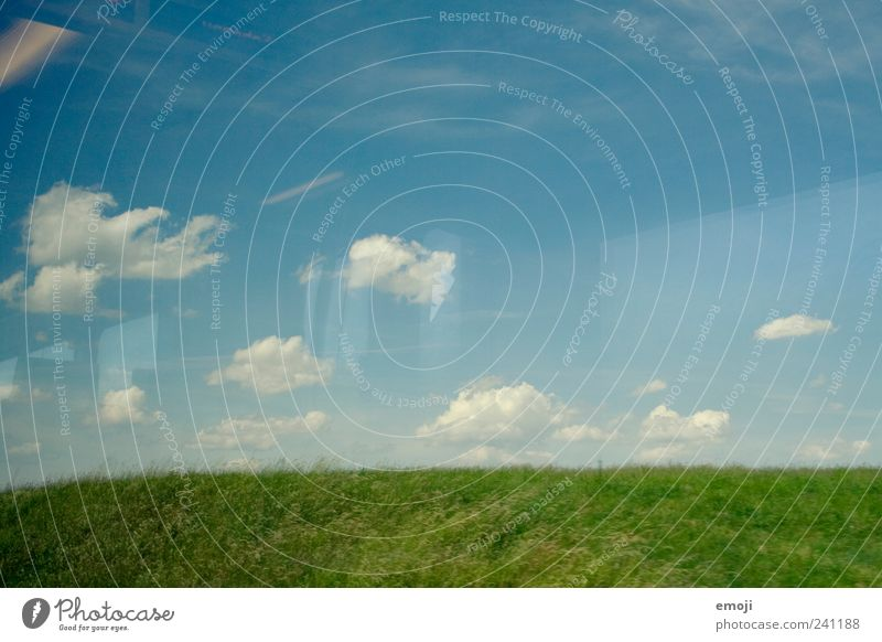 W Environment Landscape Sky Spring Summer Beautiful weather Grass Field Blue Green Colour photo Exterior shot Deserted Copy Space top Copy Space bottom Day
