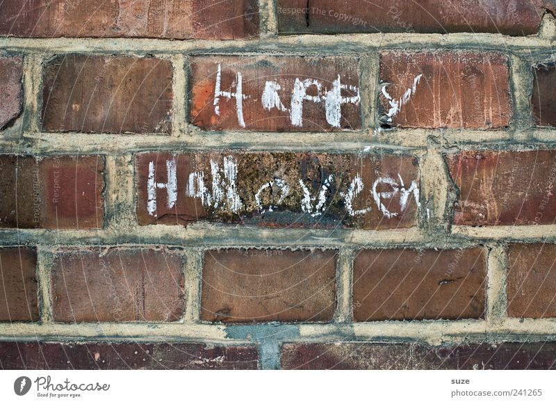 booo Hallowe'en Wall (barrier) Wall (building) Brick Characters Happiness Chalk Brick wall Typography Handwriting Daub Colour photo Subdued colour Exterior shot