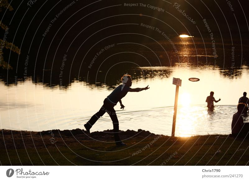 Frisbee with light and shadow Joy Leisure and hobbies Summer Beach Lake Human being 4 Water Sunrise Sunset Meadow Lakeside Swimming & Bathing Movement Flying