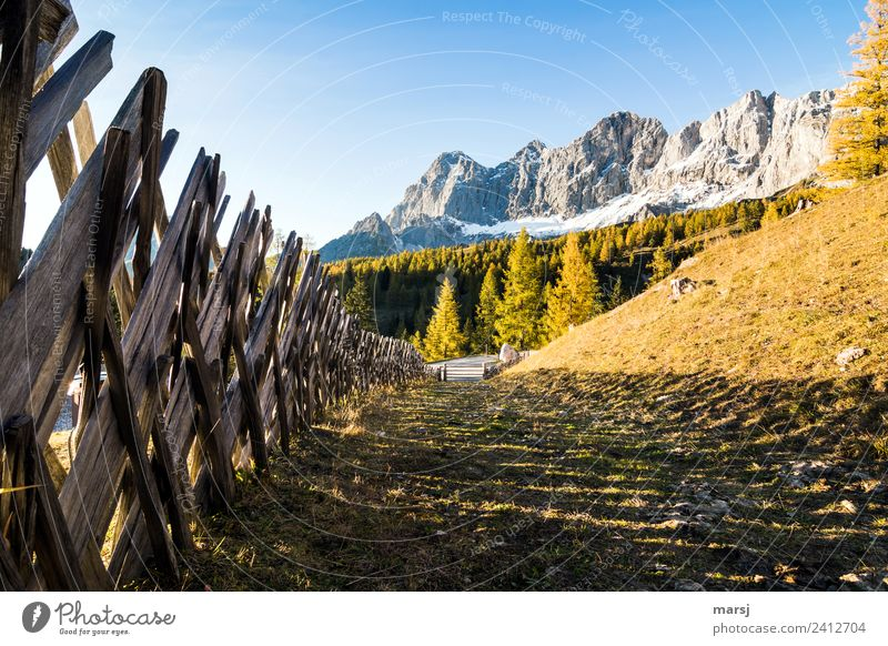 Nature Vacation & Travel Calm Mountain Autumn Wood Tourism Exceptional Trip Hiking Illuminate Beautiful weather Peak Hope Harmonious Fence