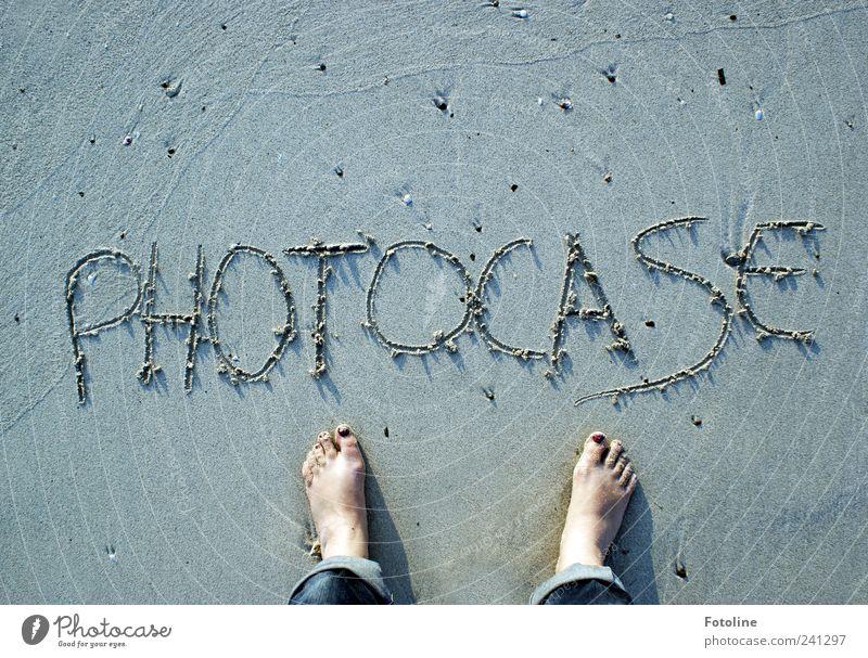 Nature Summer Beach Environment Coast Sand Stone Feet Earth Natural Wet Elements Barefoot Pattern