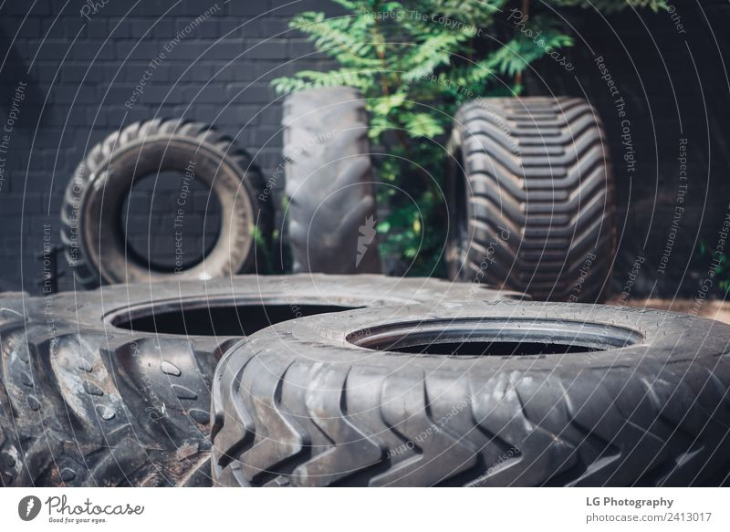 Different tractor tires in a gym, outside in sunshine Lifestyle Club Disco Sports Tractor Fitness Dark Muscular Strong Black damage on tire workout health