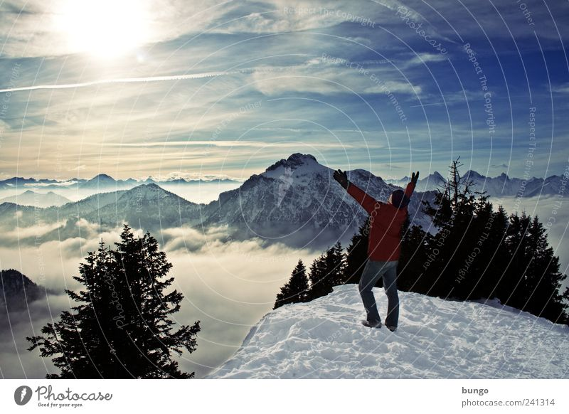ovation Adventure Freedom Winter Snow Winter vacation Hiking Climbing Mountaineering Man Adults 1 Human being Nature Landscape Fog Ice Frost Snowcapped peak