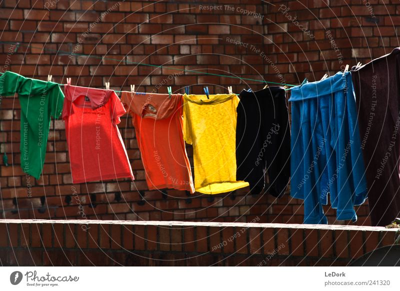 clothes line Living or residing Clothesline Populated Backyard Clothing T-shirt Sweater Brick Fragrance Cleaning Soft Blue Yellow Green Conscientiously Diligent