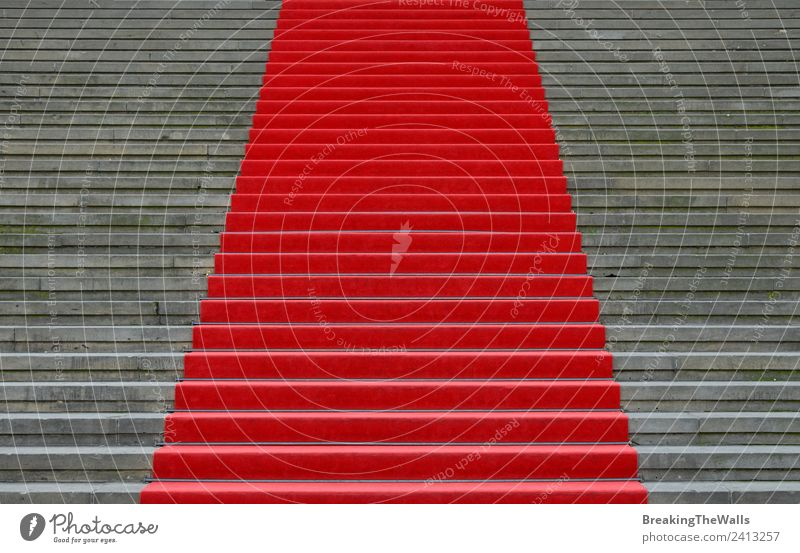 Close up red carpet over grey concrete staircase Design Feasts & Celebrations Town Manmade structures Building Architecture Stairs Stone Concrete Gray Red