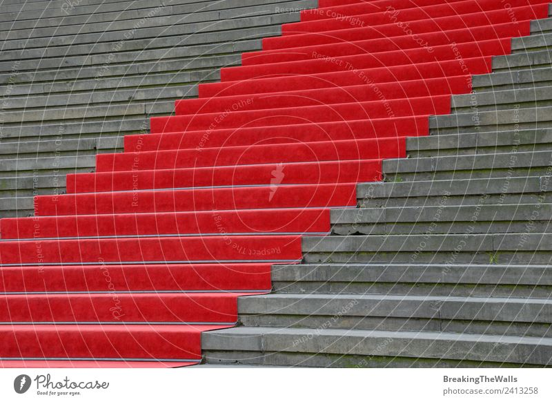 Close up red carpet over grey concrete staircase Design Feasts & Celebrations Town Building Architecture Stairs Stone Concrete Gray Red Perspective Carpet