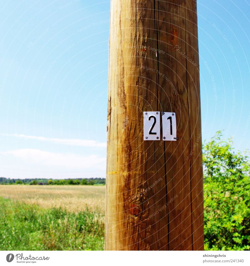21 Trip Freedom Summer Agriculture Forestry Nature Landscape Sky Beautiful weather Bushes Field Wood Digits and numbers Signs and labeling Blue Green Calm
