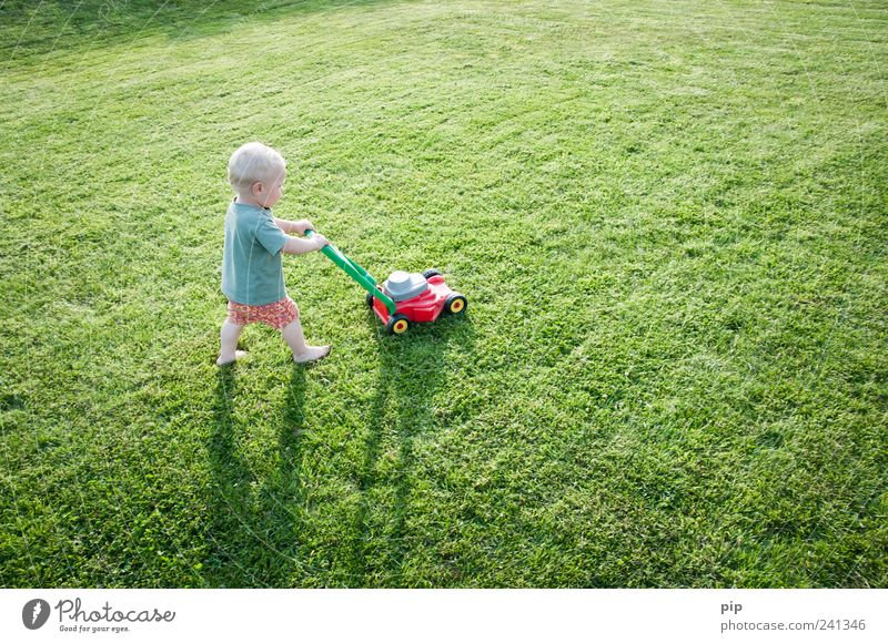 mow fast Lawnmower Masculine Child Toddler Arm Legs 1 Human being 1 - 3 years Grass Garden Meadow T-shirt Shorts Playing Small Funny Green Life Infancy