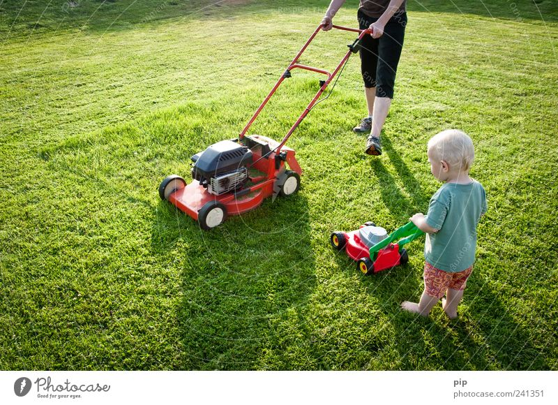 Human being Child Green Red Summer Meadow Playing Grass Small Garden Legs Work and employment Together Infancy Arm Large