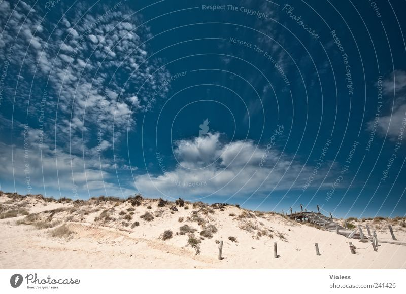 Sky Nature Blue Vacation & Travel Joy Beach Clouds Relaxation Landscape Emotions Sand Portugal Wide angle Europe
