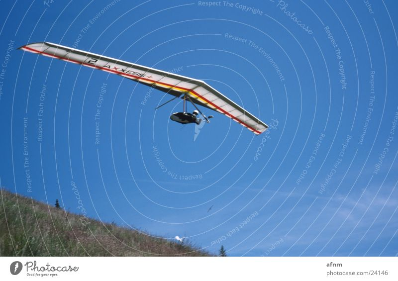 only flying is better Flying sports Sports Dragon Hang glider Sky