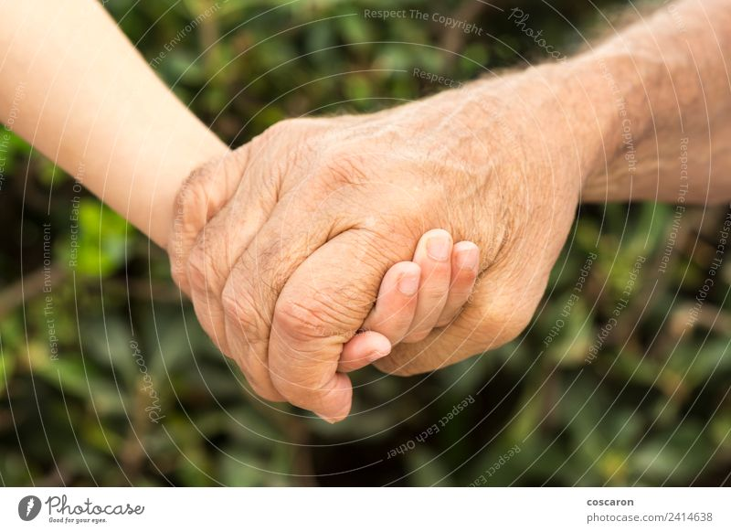 Hands of a grandfather and his grandson Lifestyle Child Boy (child) Parents Adults Grandfather Family & Relations Infancy Old Love Together Small Green Age