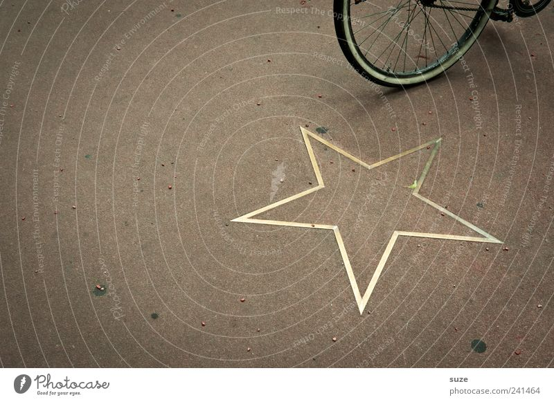 Radstar Lifestyle Style Leisure and hobbies Bicycle Gold Stand Famousness Brown Wheel Star (Symbol) Ground Hollywood Break In transit Eco-friendly Decoration