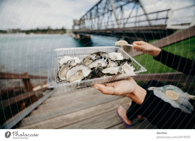 Oysters tray with a bridge in the background Food Seafood Lifestyle Style Vacation & Travel Tourism Woman Adults Hand 1 Human being Nature Coast River Australia