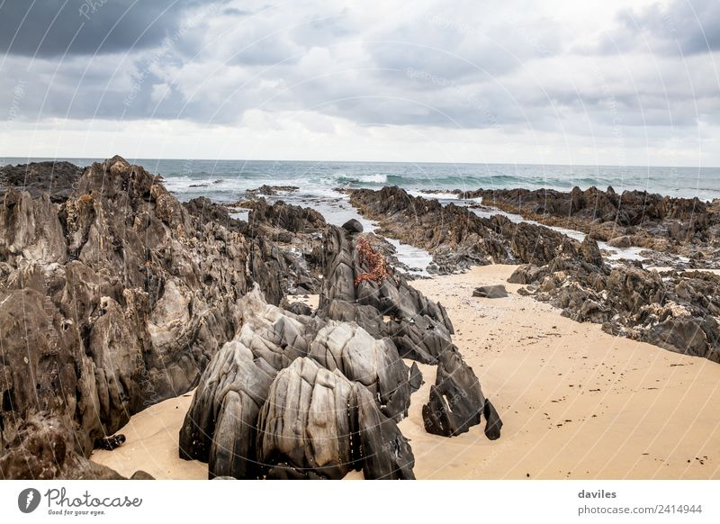Cape Conran Beach, Australia Freedom Ocean Nature Sand Sky Cloudless sky Clouds Storm clouds Bad weather Rock Waves Coast Pacific Ocean Australia + Oceania