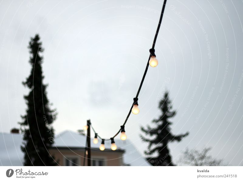 light chain Snow Tree Freeze Dream Gray White Calm Fairy lights Electric bulb Fir tree House (Residential Structure) Sky pre-Christmas period Illuminate