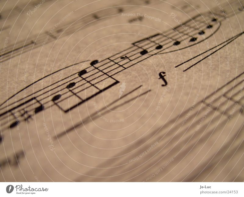 Leaf Playing Music Paper Part Concert Dynamics Musical notes Sound Song X-rayed Sheet music