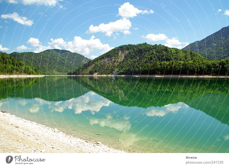 mountains of mirrors Sky Lake Reservoir Clouds reflection Summer Forest Alps Esthetic Blue Green White Calm pretty Symmetry Lakeside Reflection Untouched
