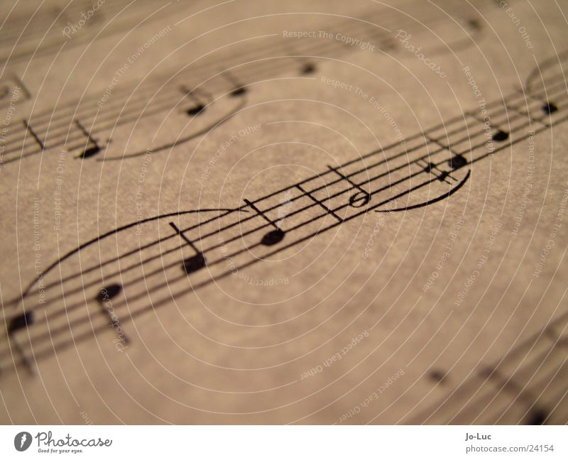g Leaf Paper Sound X-rayed Concert Music Musical notes Part sheet Dynamics Macro (Extreme close-up)