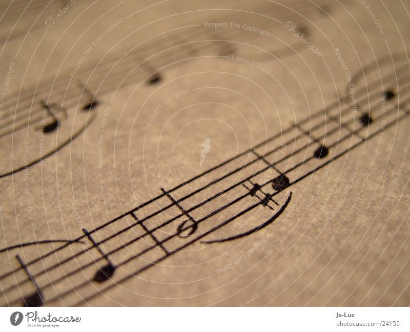 Leaf Music Paper Part Concert Dynamics Musical notes Sound X-rayed