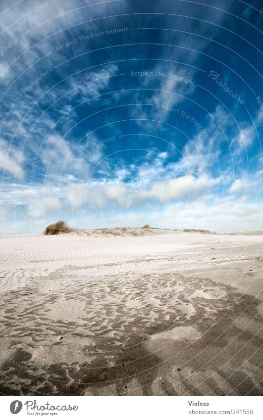 Sky Blue Summer Vacation & Travel Clouds Relaxation Sand Landscape Island North Sea Spiekeroog Walk on the beach
