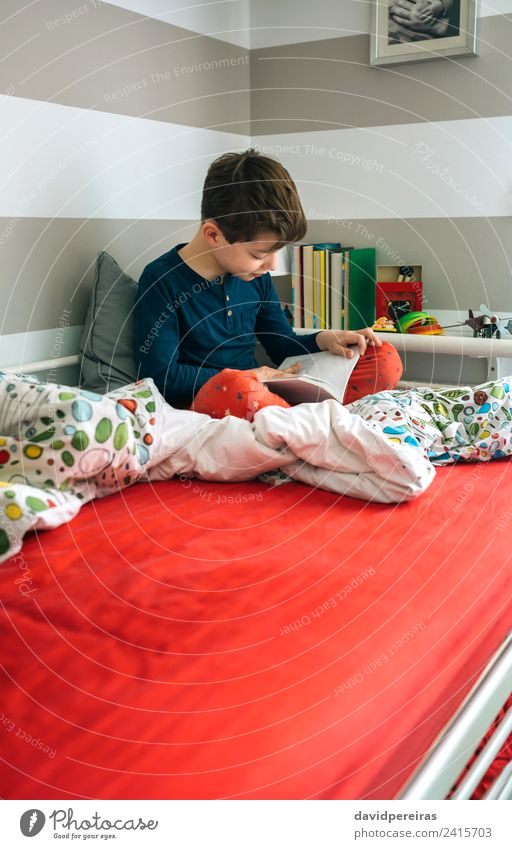 Boy reading a book Lifestyle Joy Happy Calm Leisure and hobbies Reading Bedroom Child School Human being Boy (child) Man Adults Infancy Culture Book Toys
