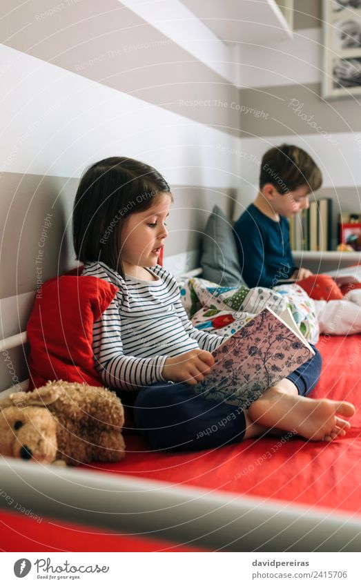 Girl and boy reading a book sitting on bed Lifestyle Beautiful Calm Reading Bedroom Child School Human being Boy (child) Woman Adults Man Sister