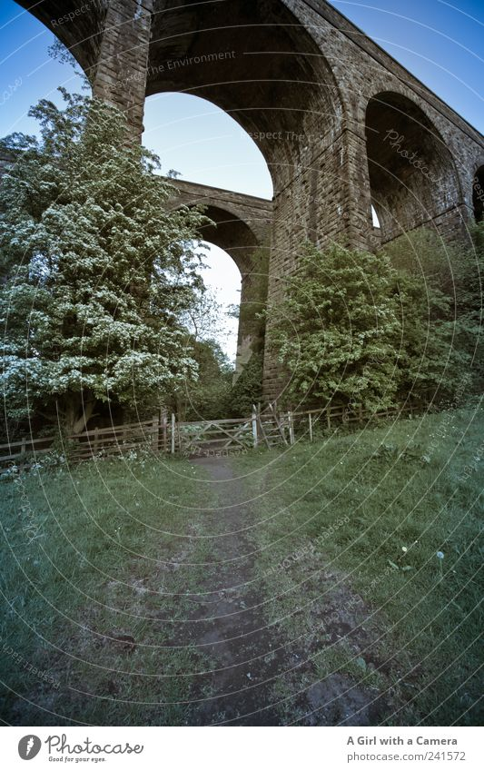 down by the viaducts Environment Nature Landscape Cloudless sky Summer Grass Field Manmade structures Architecture Bridge Bridge construction Old Authentic