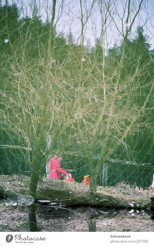Human being Nature Water Tree Plant Animal Forest Lake Park Pink Environment To go for a walk Discover Distorted