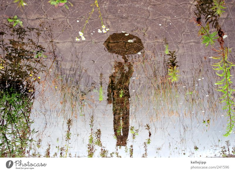Mary poppins Human being Masculine 1 Environment Nature Landscape Clouds Climate Weather Rain Umbrella Jump Puddle Water Fly Hover Colour photo Multicoloured