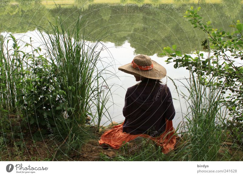 Human being Youth (Young adults) Beautiful Summer Water Young woman Loneliness Calm Happy Lake Dream Idyll Sit To enjoy Beautiful weather Romance