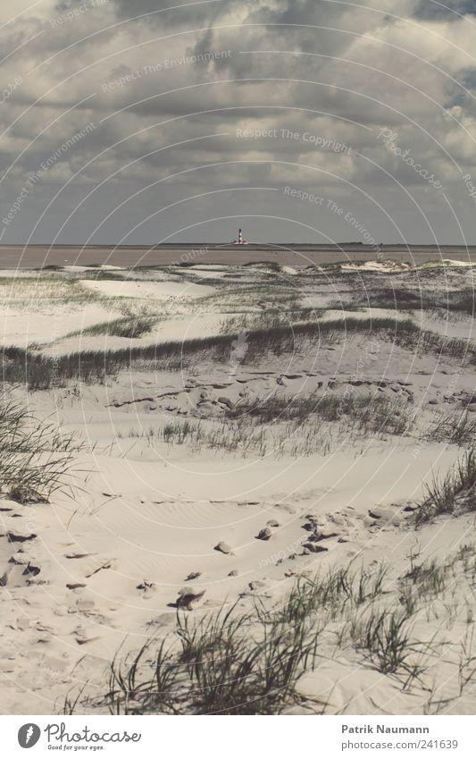 Nature Sky Summer Beach Clouds Far-off places Dark Cold Grass Dream Sand Rain Landscape Wind Might Bushes