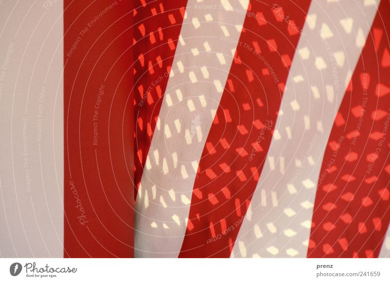 red white Line Stripe Red White Cloth Cloth pattern Pattern Structures and shapes Point of light Colour photo Exterior shot Day Light Shadow Tilt