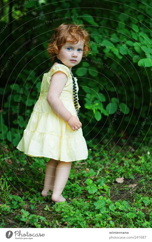 little fairy Human being Child Nature Green Girl Yellow Grass Garden Park Beginning Bushes Uniqueness Dress Mysterious Toddler Inspiration