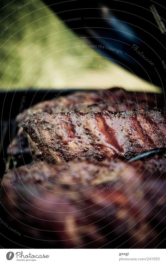 Food Appetite Fragrance Barbecue (event) Meat Barbecue (apparatus) Ribs Slow food Pork Smoked