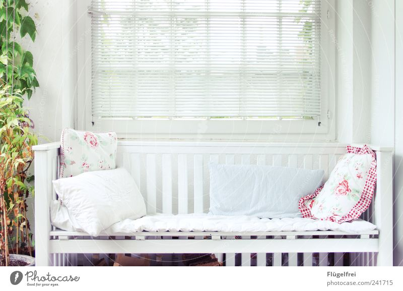 This is the white surface - the infinity. Balcony Sit Bench Wooden bench Cushion Flower Plant Venetian blinds Relaxation Calm To enjoy Empty Places Freedom