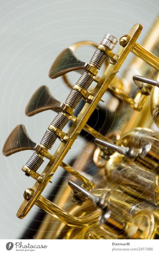 """tenor horn Leisure and hobbies Music Listen to music Concert Outdoor festival Opera music school valves wind instrument deep sheet Valves Tenorhorn """"Sheet metal"""