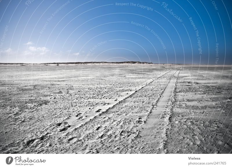 Spiekeroog long way to.... Nature Landscape Sand Sky Beach North Sea Island Relaxation Blue Tracks Freedom infinitely Colour photo Exterior shot Copy Space top