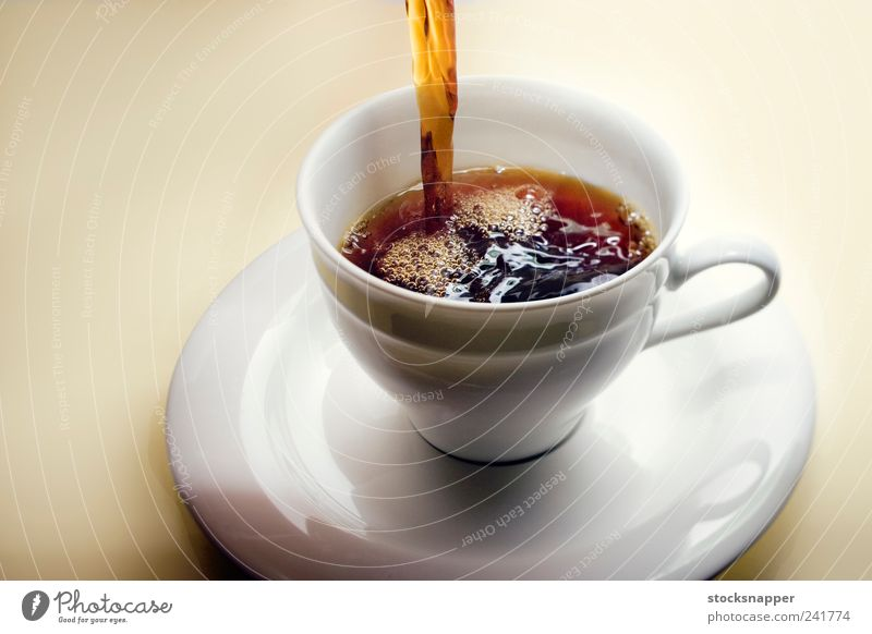 Coffee Beverage Caffeine Cup Pour into Fresh Hot Warmth Serve Air bubble Deserted