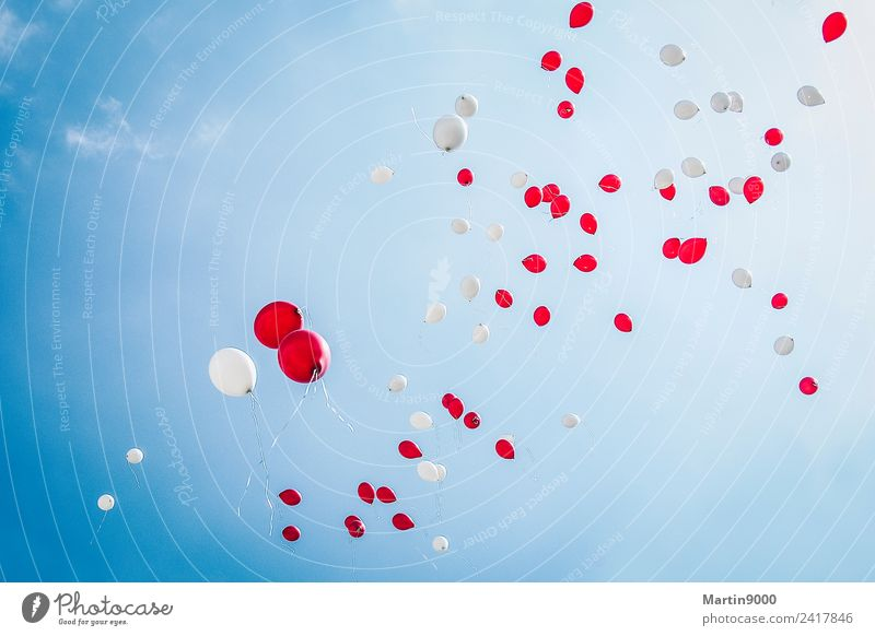 99 Balloons Happy Feasts & Celebrations Wedding Birthday Flying Love Blue Red White Moody Joy Happiness Colour photo Exterior shot Copy Space top
