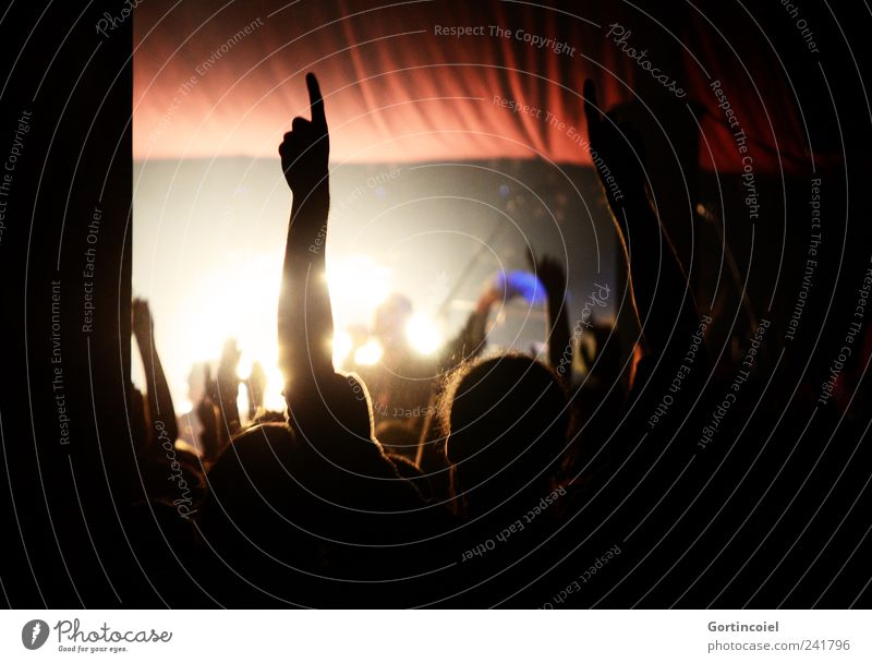 Mouvement mondial Night life Party Event Music Feasts & Celebrations Dance Human being Crowd of people Concert Singer Fan Emotions Moody Joy Happy Happiness