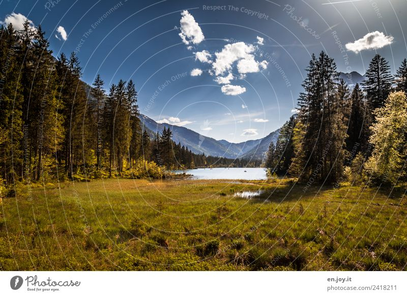 Sky Nature Vacation & Travel Summer Plant Green Sun Landscape Relaxation Calm Forest Mountain Environment Meadow Lake Idyll